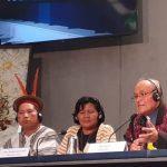Participantes do Sínodo explicam o significado da proposta do rito amazônico